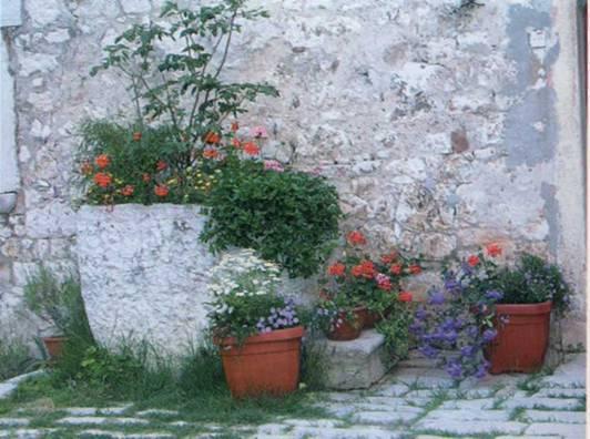Контейнерное цветоводство